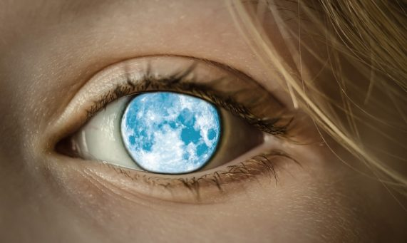 Seeing the world through our eyes